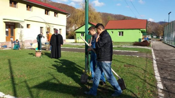 Activitate ecologică realizată în stațiunea Moneasa (GALERIE FOTO)